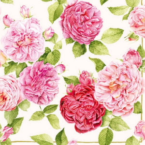 5 Napkins English Rose Pink Cream 33 x 33 cm Tissues Decoupage Paper Party Craft - Hobby & Crafts