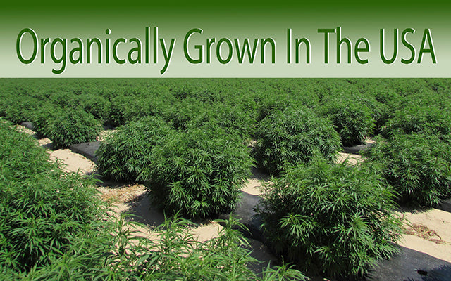 organically grown in the USA
