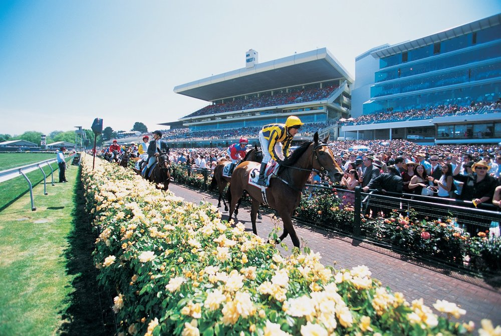 Maykbe Diva Marquee - Derby Day - 31 October 2020