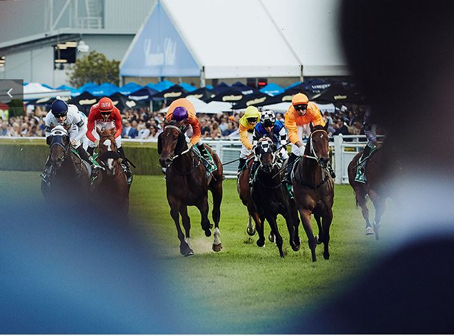 The Stayers Lounge - Derby Day - 31 October 2020