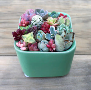 Pixie Candy Dish Green