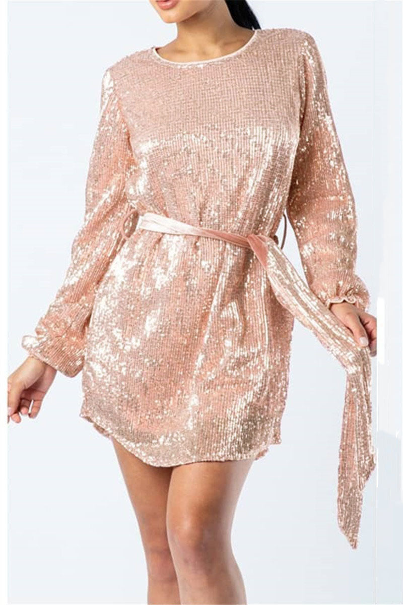 Sequins Splicing Sheer Dress With Belt