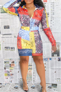 Color Splicing Printed Zipper Dress