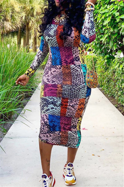 Color Splicing Printed Midi Dress