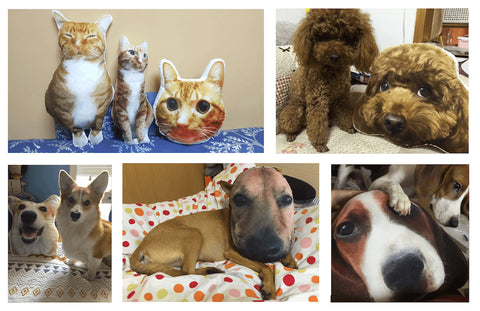 ca1b92cbc58d Personalised Custom Pet Pillow funny Dog Cat face animal selfie Photo  cushion photo tips and guideline