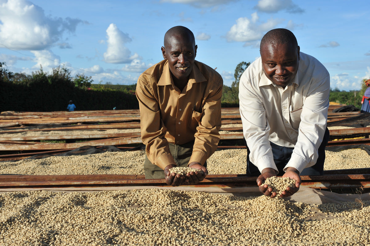 East African coffee producers