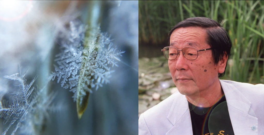 Discoveries of Masaru Emoto about the Memory and Member of Water