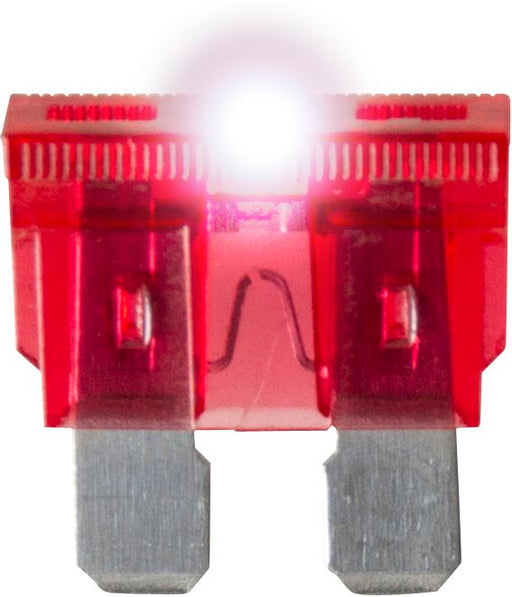 Standard LED Blade Fuses - Choose Amps & Quantity - JAR UK Industries