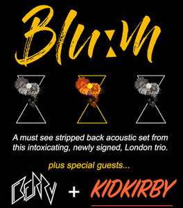 April 19th - Acoustic showcase featuring BLOOM, BERRY and KIDKIRBY