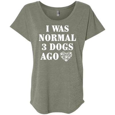 I Was Normal 3 Dogs Ago Slouchy Tee