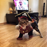 Cat-Pirate Costume