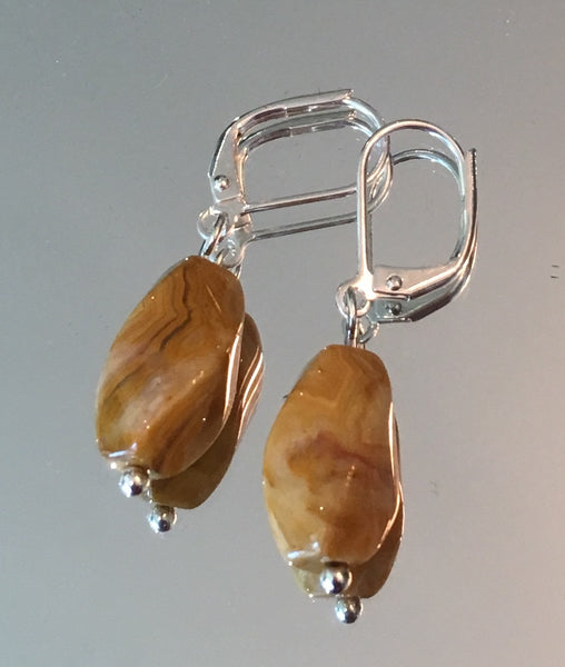 Crazy Lace Agate Twist Earrings