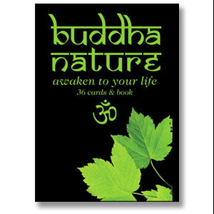 Buddha Nature Cards and Book by Kelly Oswald inspirational oracle guidance 36 card set in box - Late Boomer Vintage