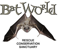 Bat World Rescue Conservation Sanctuary