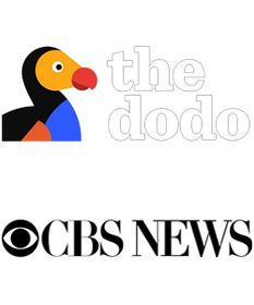The FrogLog featured on The Dodo and CBS News