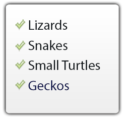 lizards, snakes, small turtles, geckos use The FrogLog