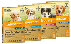 Advocate Medium Puppy/Dogs 4-10kg