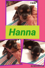 SOLD- Click On Picture For More Info- Deposit for Hanna
