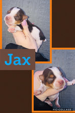SOLD- Click On Picture For More Info- Deposit for Jax