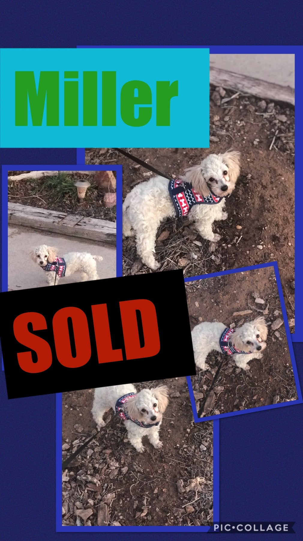 SOLD- Click On Picture For More Info- Deposit for Miller