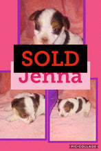 SOLD- Click On Picture For More Info- Deposit for Jenna
