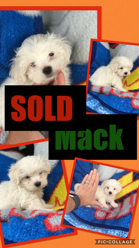 SOLD- Click On Picture For More Info- Deposit for Mack