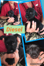 Click On Picture For More Info- Deposit for Diesel