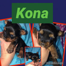 SOLD- Click On Picture For More Info- Deposit for Kona
