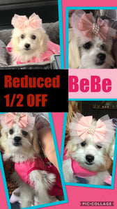 SOLD- Click On Picture For More Info- Deposit for BeBe