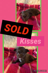 SOLD- Click On Picture For More Info- Deposit for Kisses