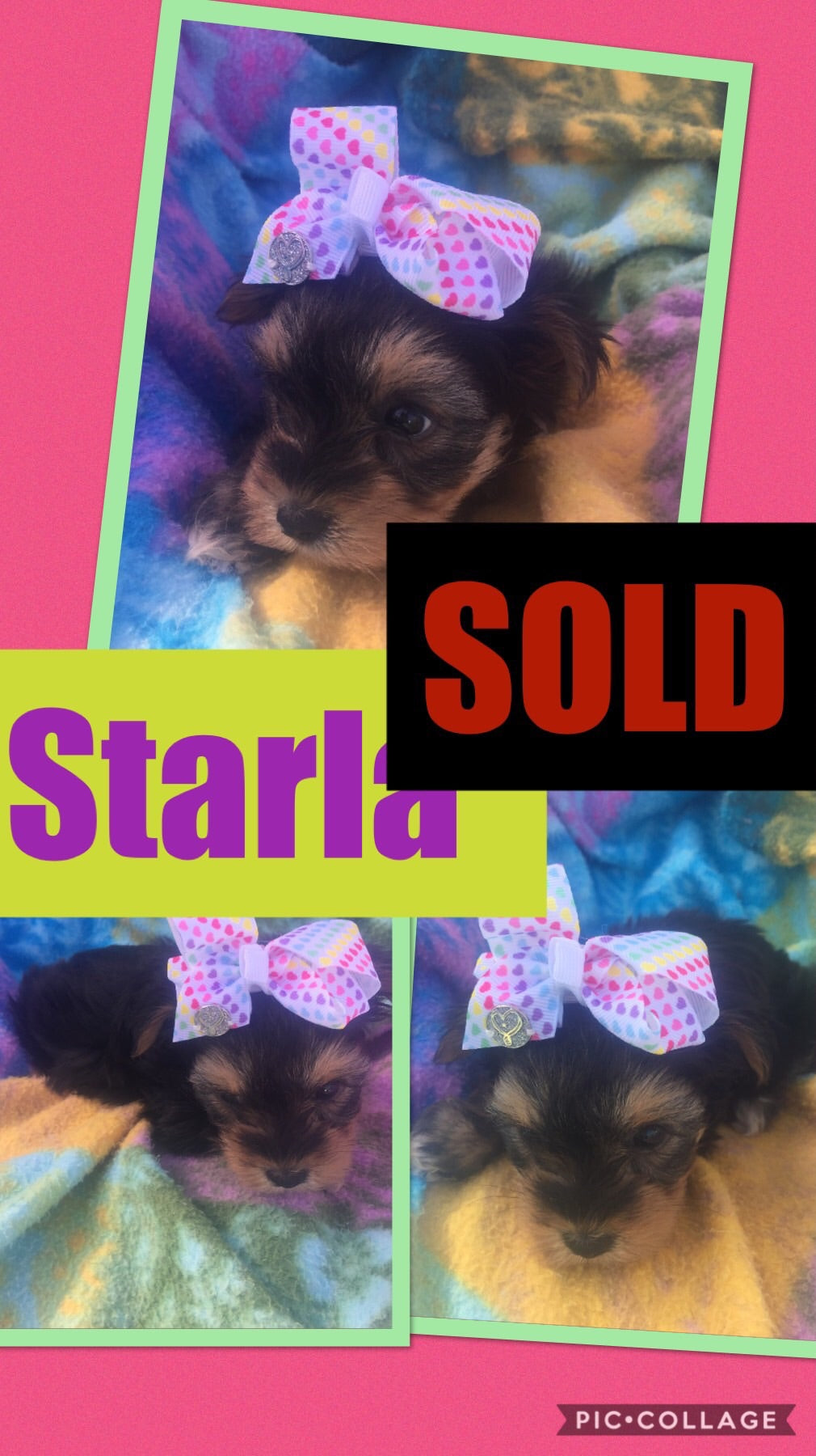 SOLD- Click On Picture For More Info- Deposit for Starla
