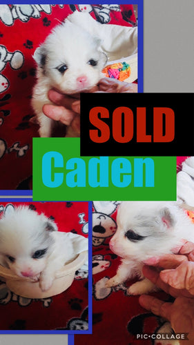 SOLD- Click On Picture For More Info- Deposit for Caden