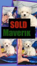 SOLD- Click On Picture For More Info- Deposit for Maverik