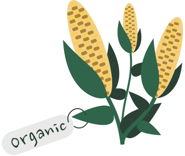 What does it mean to 'buy organic' in China?