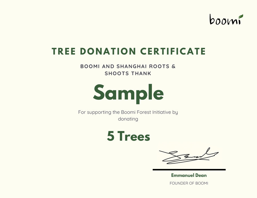Boomi Forest Initiative | Plant A Tree | Boomi South East Asia | Zero Waste Products