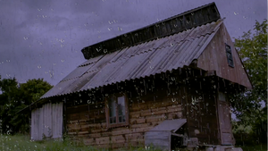 Rain on a Tin Roof and Thunder Sounds MP3
