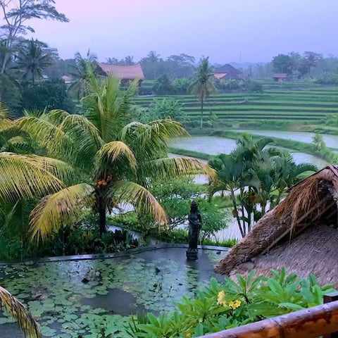 Tropical Rainstorm & Thunder Sounds in Bali MP3