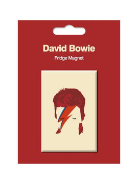 David Bowie Fridge Magnet Aladdin Sane