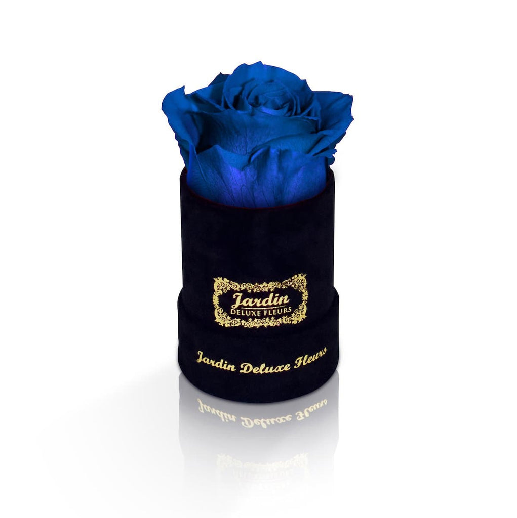 1 Blue Real Rose that last a Year in Black Box