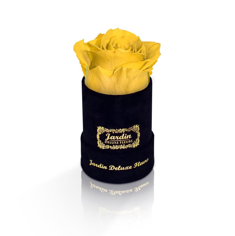 1 Yellow Long Lasting Rose in Black Suede Hatbox