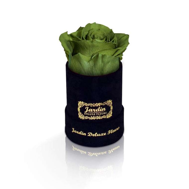 1 Green Long Lasting Rose in Black Suede Hatbox