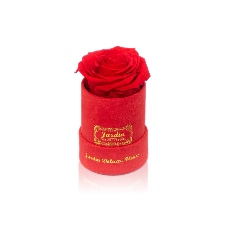 Real Long Lasting Rose x Red Suede Box