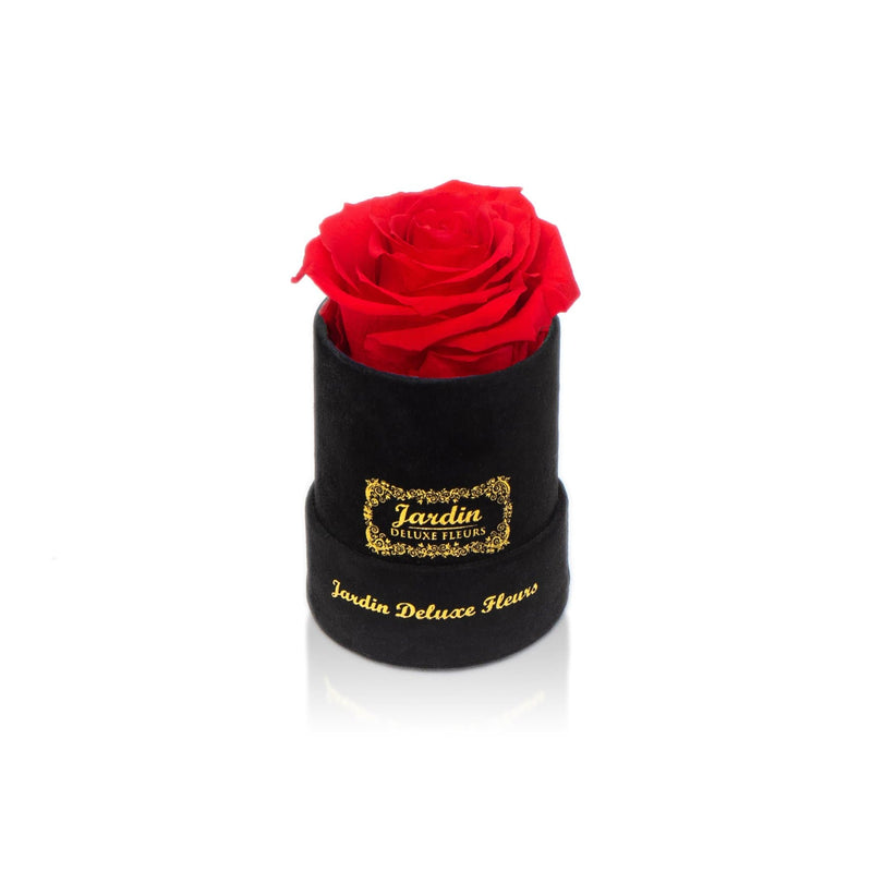 Real Long Lasting Rose x Black Suede Box