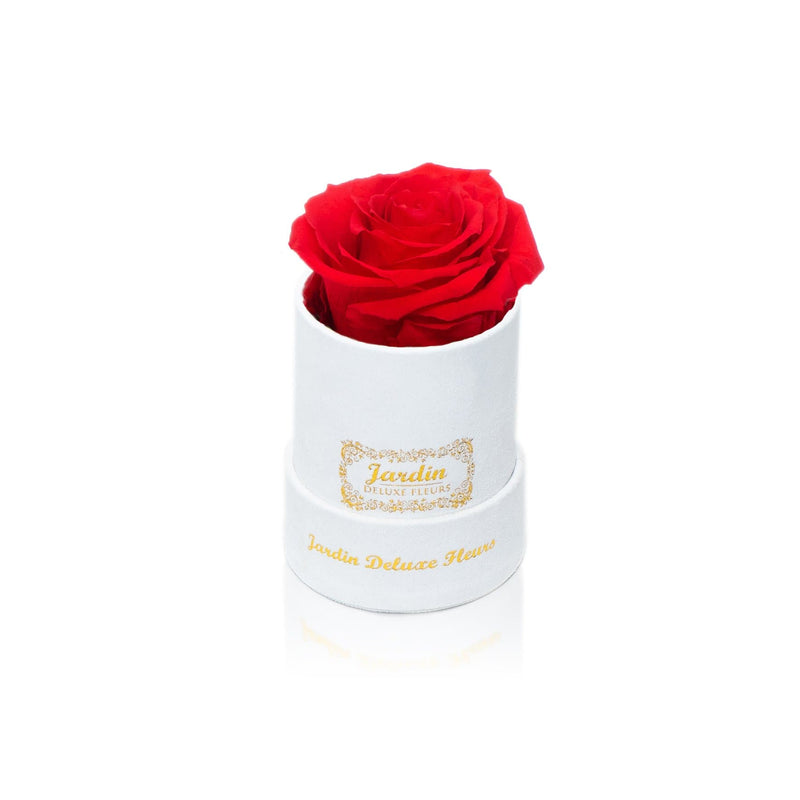Real Long Lasting Rose x White Suede Box