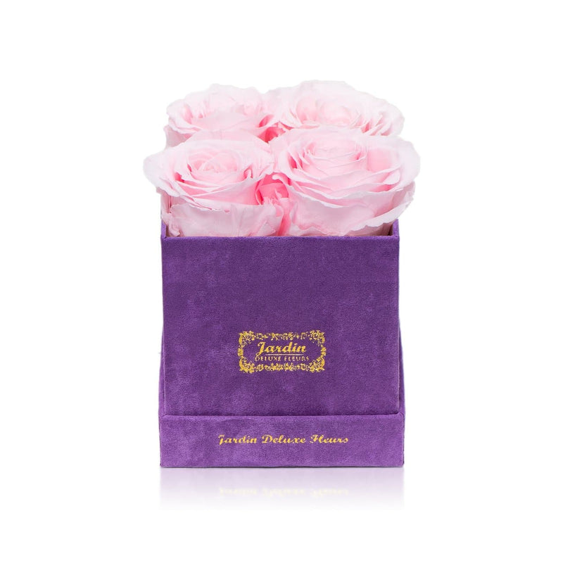 4 Long Lasting Roses in Purple Box
