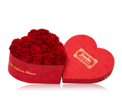 20-24 Red Long Lasting Roses in Red Heart Box