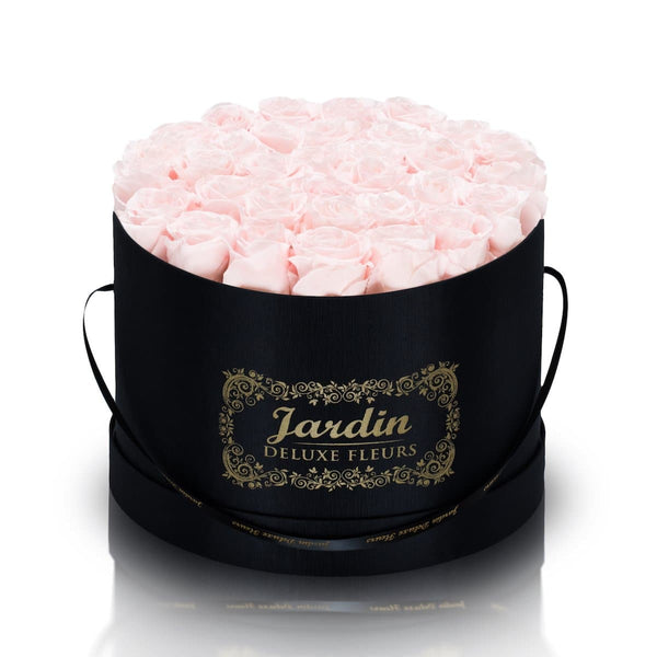 36 Light Pink Long Lasting Roses in Black Hatbox