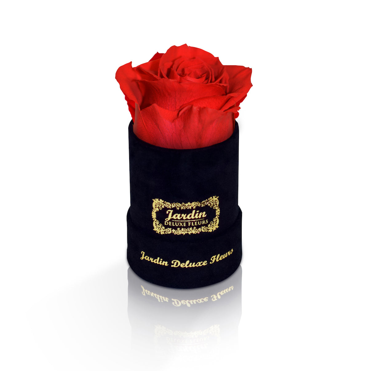 Jardin Deluxe Fleurs - Parisian Inspired Real Roses that last a ...