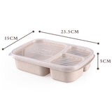 Biodegradable Eco-friendly Storage Containers