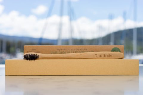 Bamboo Gratitude Toothbrush with Charcoal Bristles